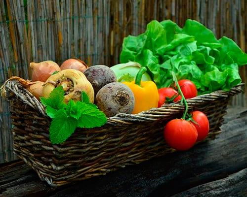 Овощи на немецком языке